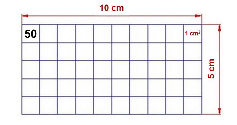 Podemos utilizar cuadrículas que nos pueden ayudar a realizar mejor nuestro cálculo, con el objetivo de alcanzar las 50 UF/cm2